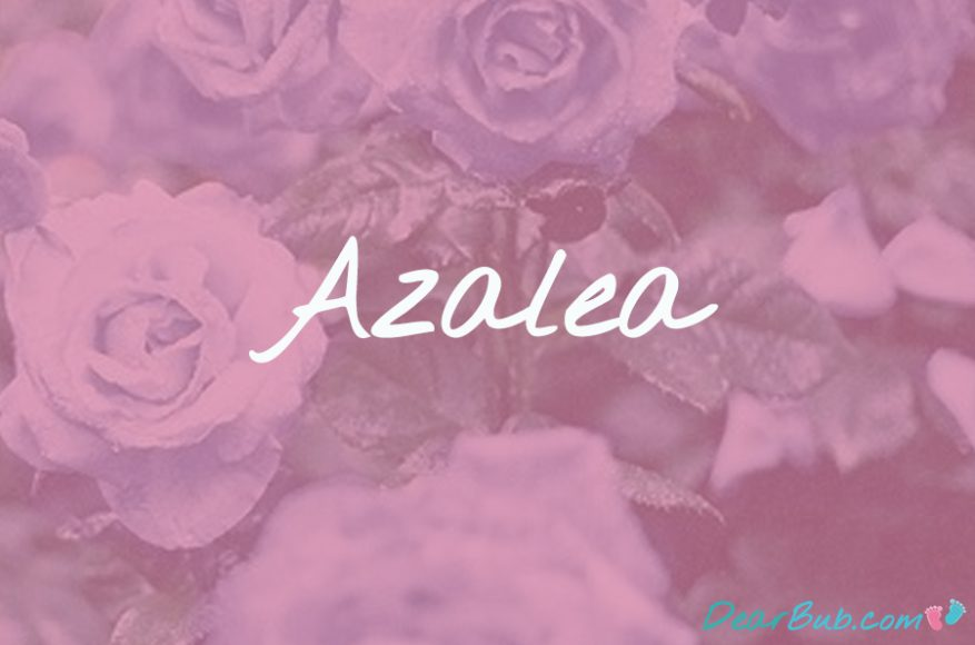 baby names for girls inspired by flowers-babynames-azalea-dearbubblog