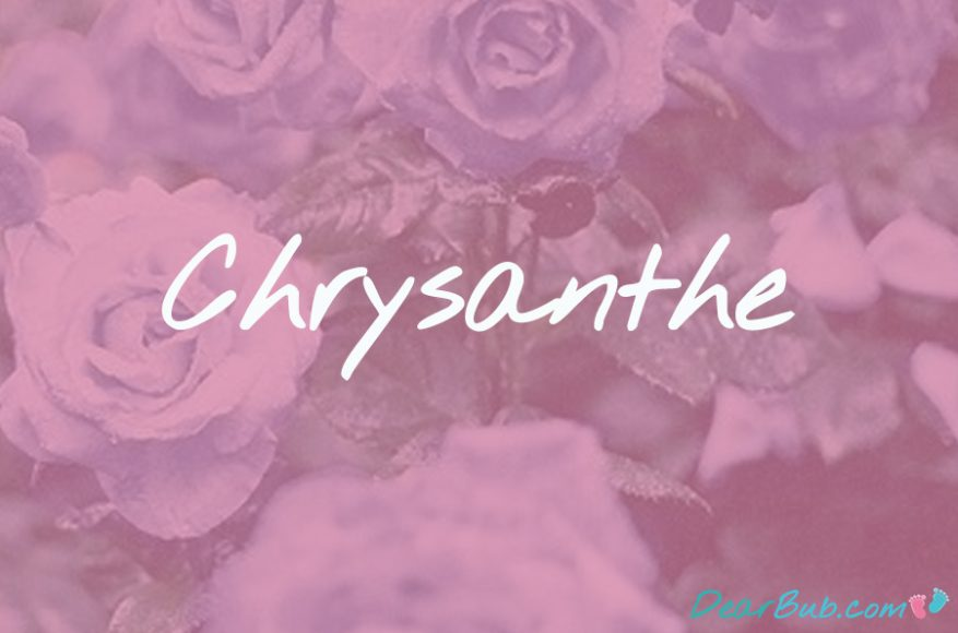 baby names for girls inspired by flowers-babynames-chrysanthe-dearbubblog