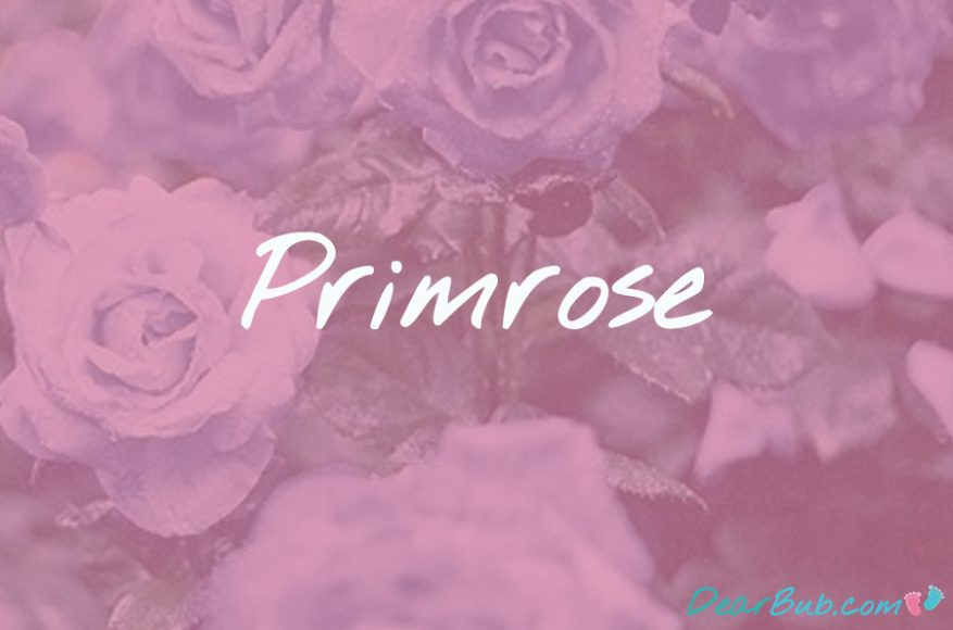 baby names for girls inspired by flowers-babynames-primrose-dearbubblog