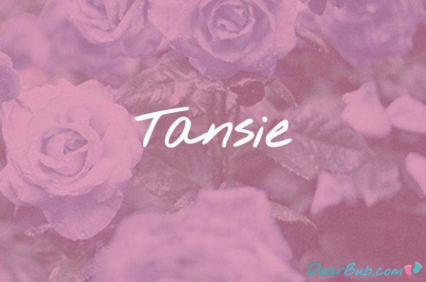 baby names for girls inspired by flowers-babynames-tansie-dearbubblog