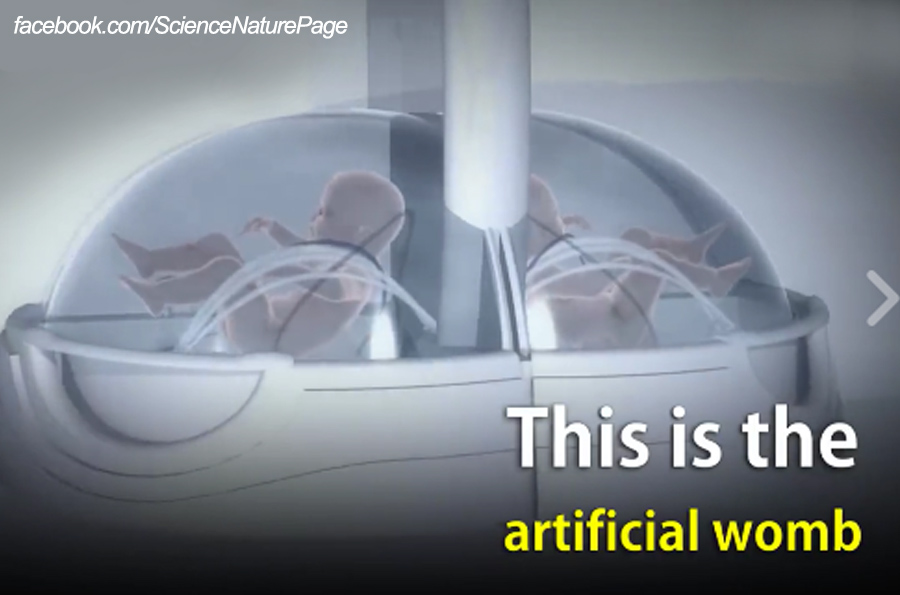 Artificial Wombs