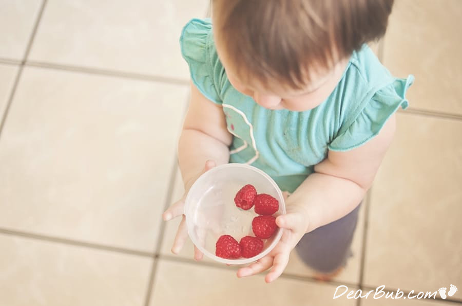 how to explain ethical eating to kids_2_nutrition_health-guest blog-_blog_dearbub.com